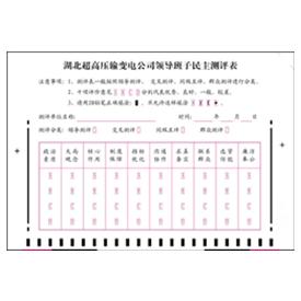 变电公司领导班子民主测评表