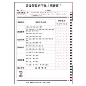 处级领导班子民主测评票