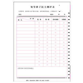 领导班子民主测评表