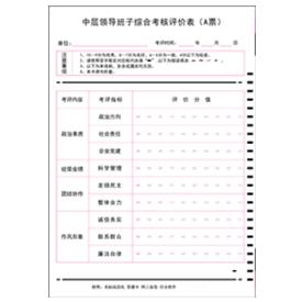 中层领导班子综合考核评价表