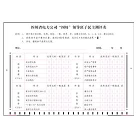 """四川省电力公司""""四好""""领导班子民主测评表"""