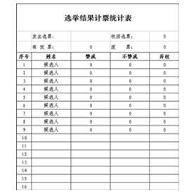 选举结果计票统计表