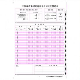 中国邮政集团分公司民主测评表